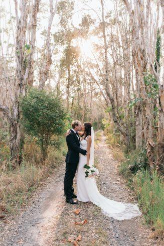 paper bark forest tweed coast photo location